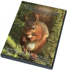Red Squirrels DVD